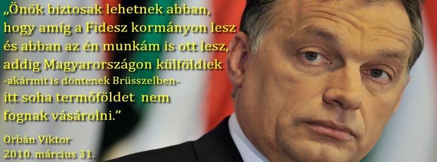 orbán hazaáruló.jpg