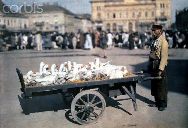 Beautiful Color Photos of Hungary in The Early of 1930s (2).jpg