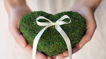 Green wedding tippek: így csökkentsd az ökológiai lábnyomát az esküvőtöknek!