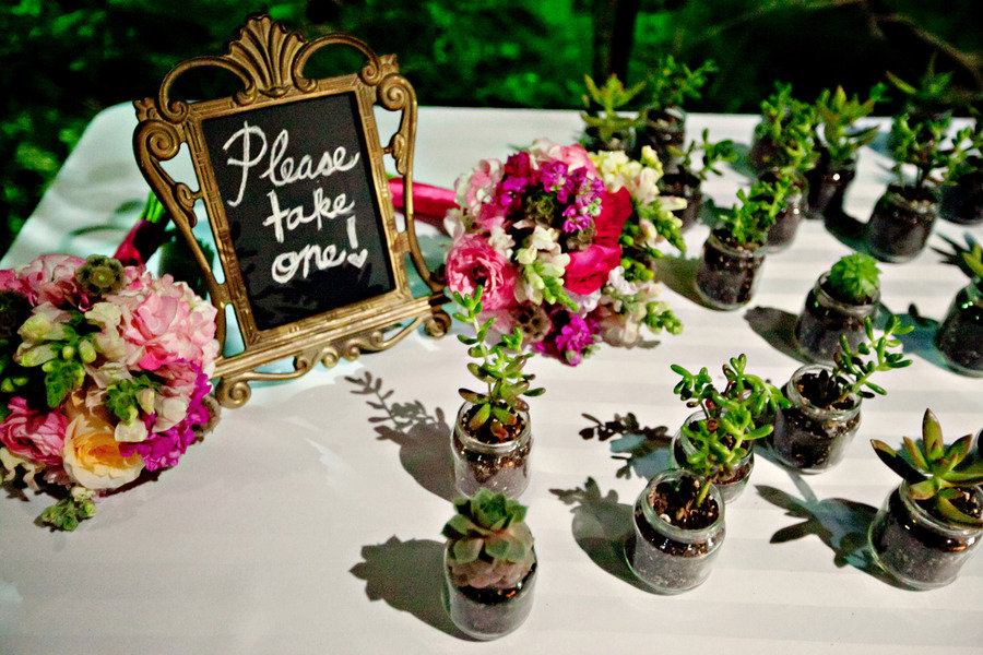 eco-friendly-wedding-guest-favors-succulents.jpg