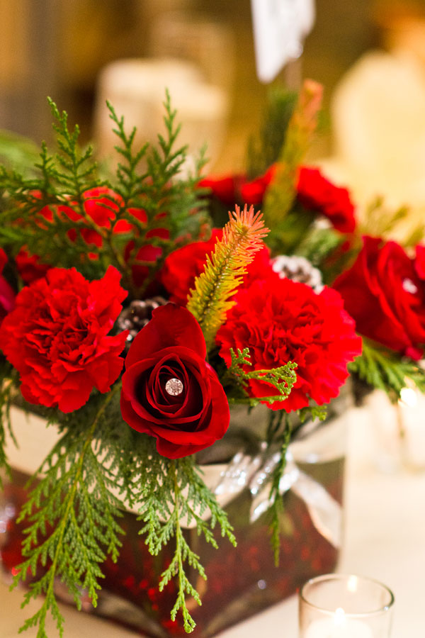 red-roses_rachelpearlmanphotography.jpg