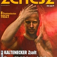 Cikk-ajánló: Beszélgetés Kaltenecker Zsolttal