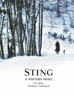 A Winter's Night...