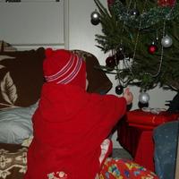 Fejezetek a karácsonyból