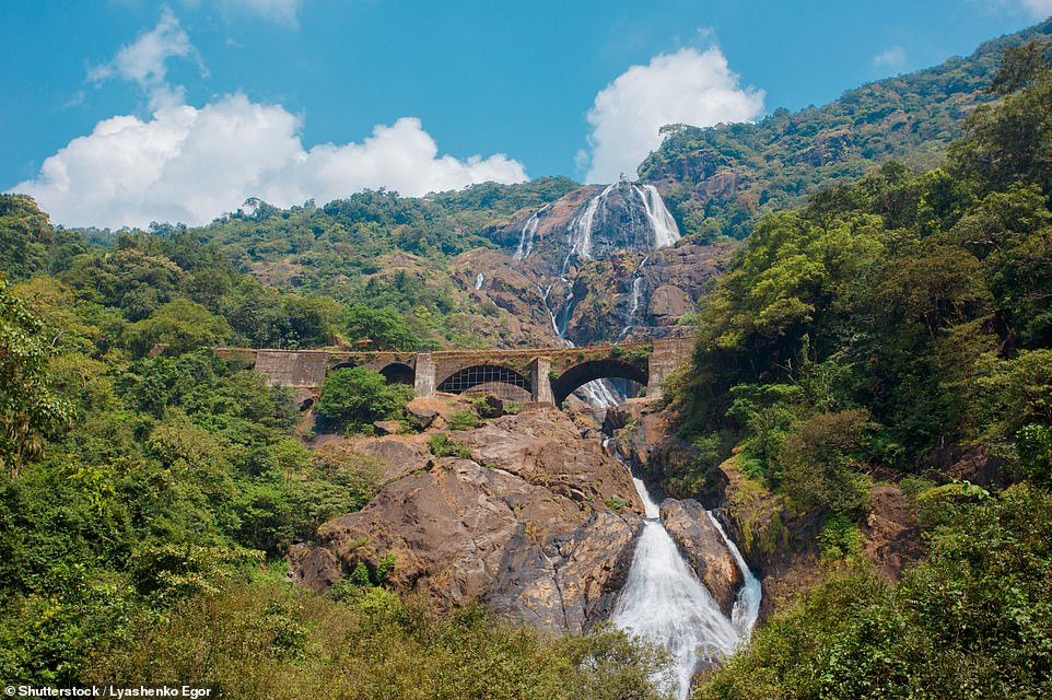 18293086-7383387-a_beautiful_image_of_the_epic_300ft_four_tiered_dudhsagar_falls_-a-193_1568192699756.jpg