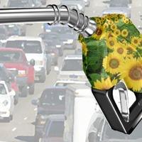 Környezeti károkhoz vezethet a bioüzemanyag