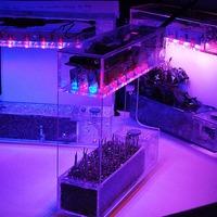 LabBox: a világ legkisebb hidroponikus kertészeti rendszere