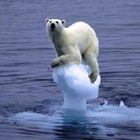 Mi lenne, ha eltűnne az Északi-sark?