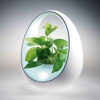 Planto: világítás vízzel