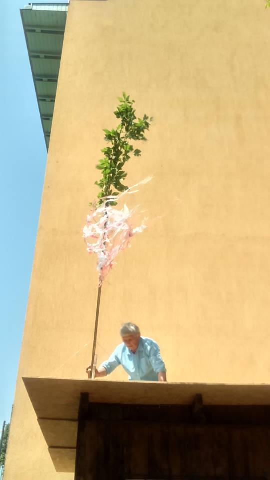 Gonoszelhárítási gyakorlat - nincs új ház szalagos zöld ág nélkül