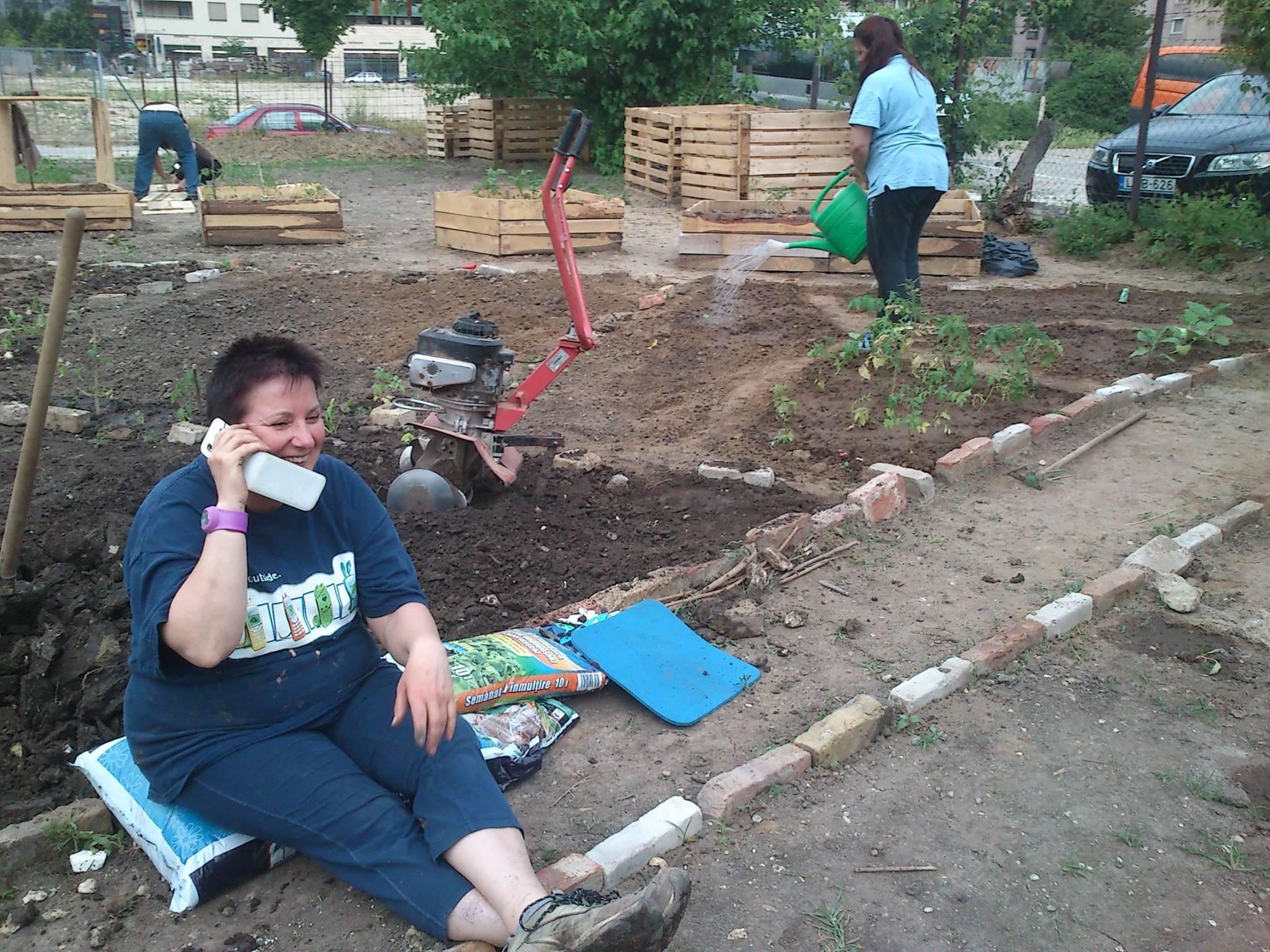 És ez is régi kertben készült, éppen rota kapáltunk - serényen (2014)