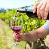 2020 az 'organikus' borok éve lesz?