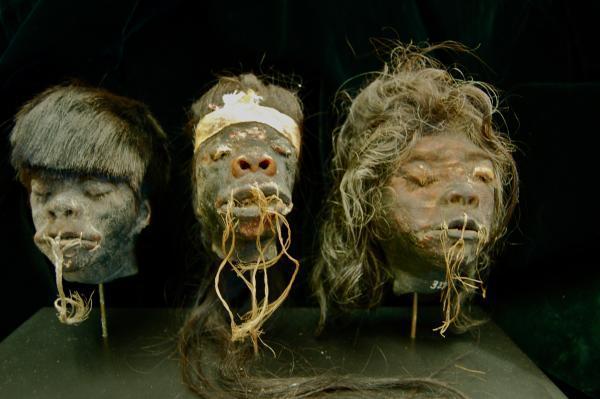 shrunken_heads.jpg