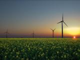 Hol a határ a megújuló áramtermelésben?