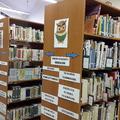 Gyere velem a könyvtárba!