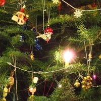 Karácsonyi troll countdown – Nr.7.