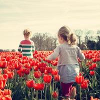 Möchten Sie die fröhlichsten Kinder der Welt haben?