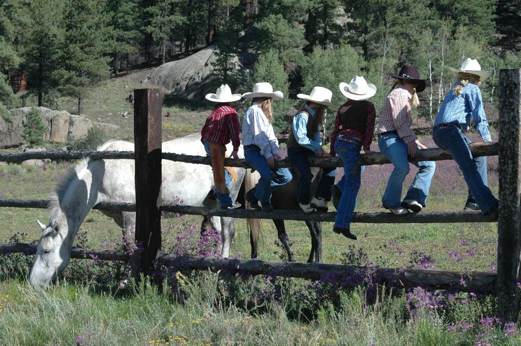 17_kids_on_a_fence.JPG