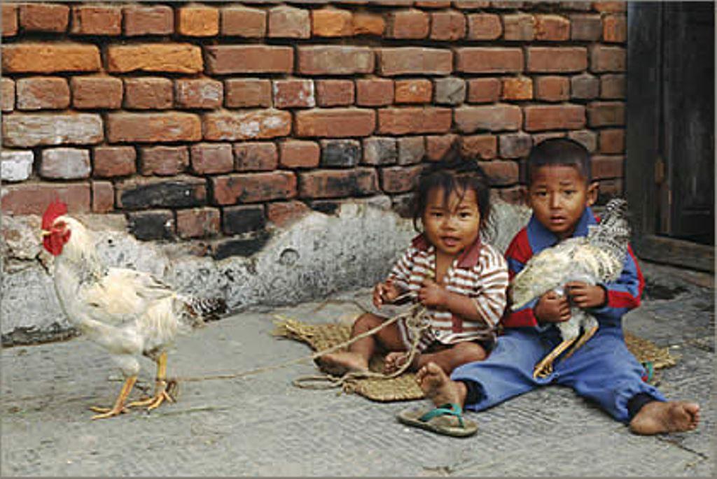 47_16_nepal_kathmandu.jpg