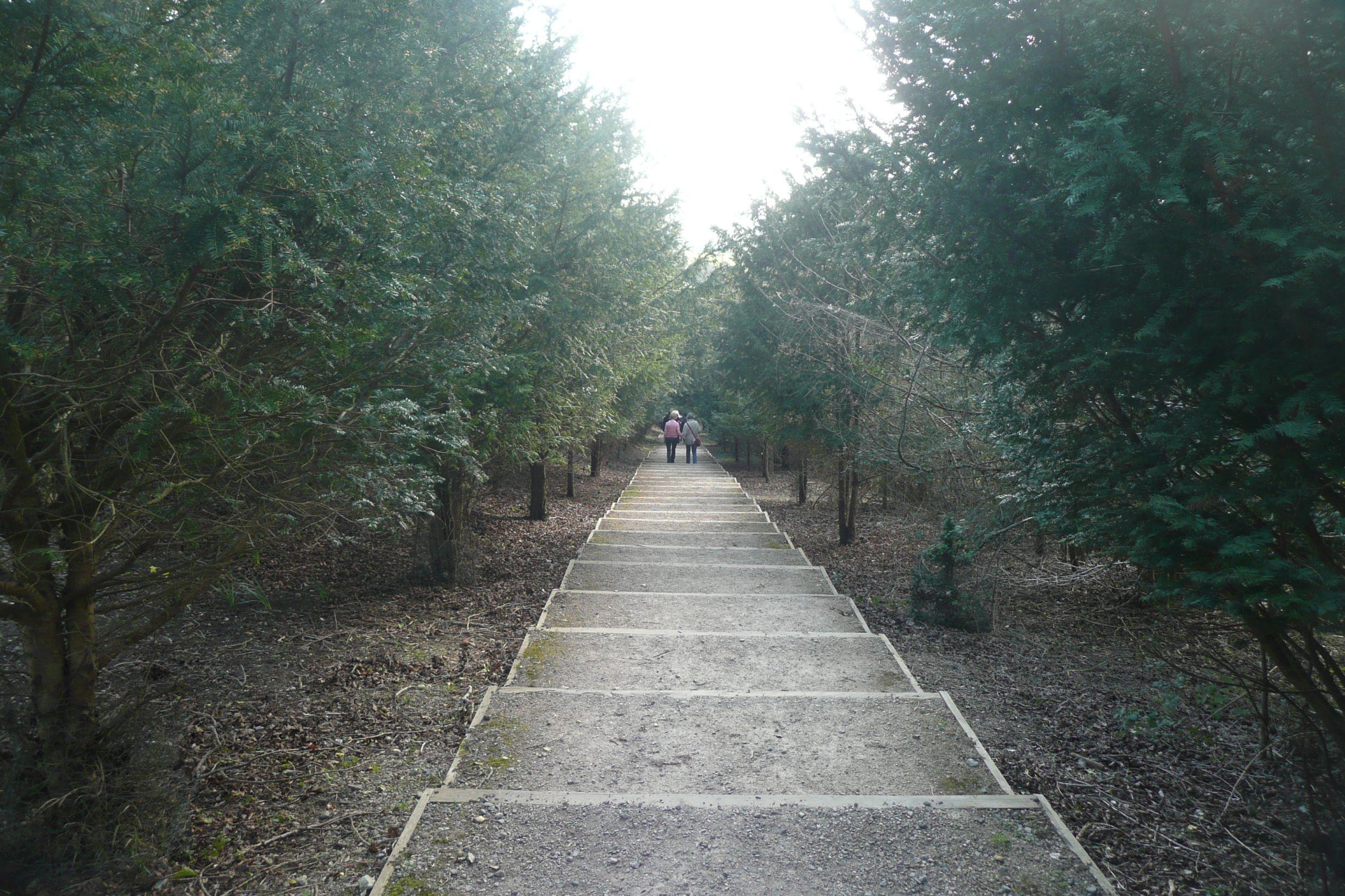 Először széles, rendezett lépcsősor