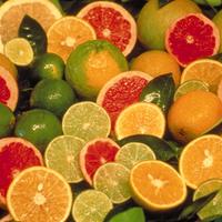 C-vitamin III. rész