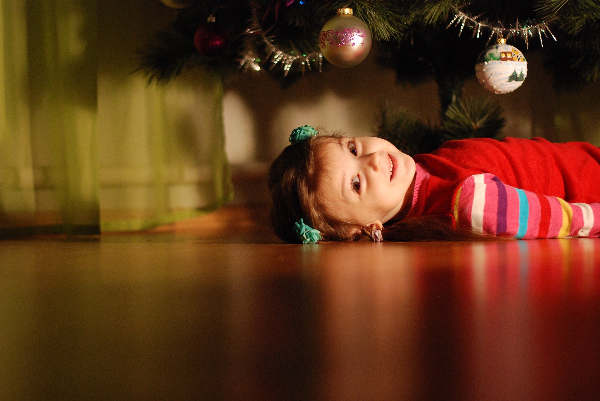 christmas-tree-1966225_1920.jpg