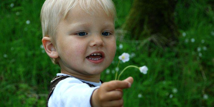 child-offering-flower_1367774759.jpg_700x350
