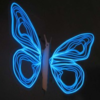 Éjjeli pillangó