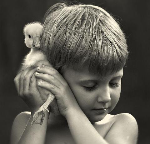 animal-children-photography-elena-shumilova-16.jpg