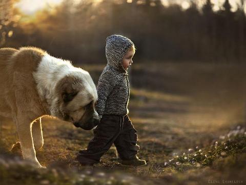 animal-children-photography-elena-shumilova-18.jpg
