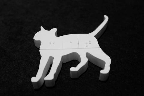 fittle-cat.jpg