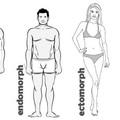 Egészséges táplálkozás 2. - Testtípusok a diétában
