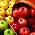 """""""Napi egy alma az orvost távol tartja"""" - AZ ALMA GYÓGYHATÁSAI"""