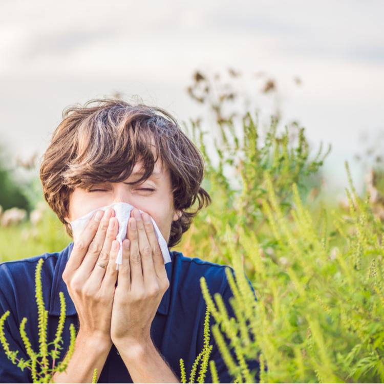 Tévhitek, amiket ideje elfelejteni a légúti allergiával kapcsolatban