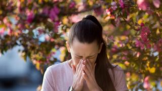 Itt a pollenszezon, ezek a növények támadnak