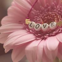 Ahol működik a szeretet érzése, ott mindenki elégedett, boldog és vidám.