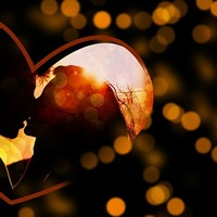 Az életre szóló szeretet titka (könyvajánló)