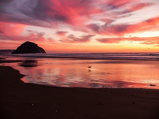 beach-731156_640.jpg