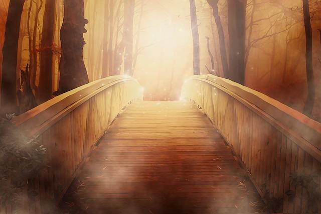 bridge-19513_640_1.jpg