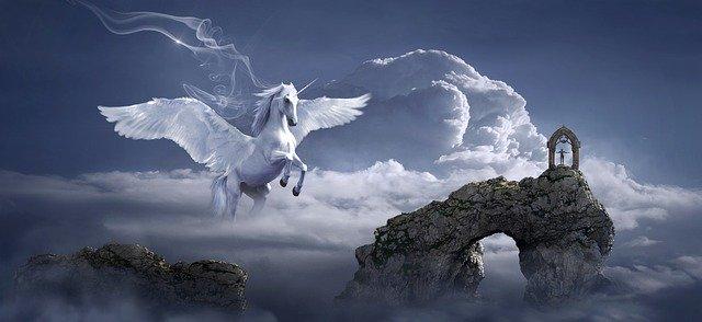 horse-3395135_640.jpg