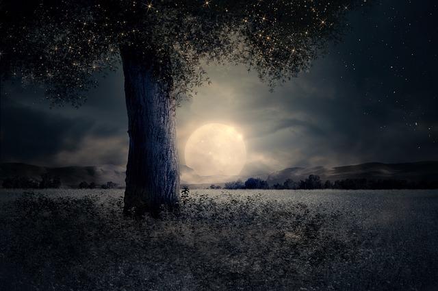 night-2539411_640.jpg