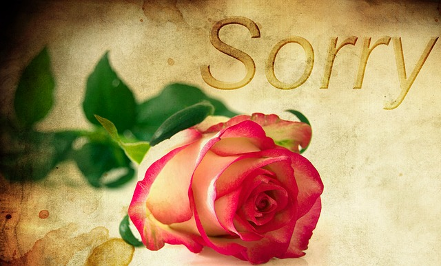 rose-1271216_640.jpg