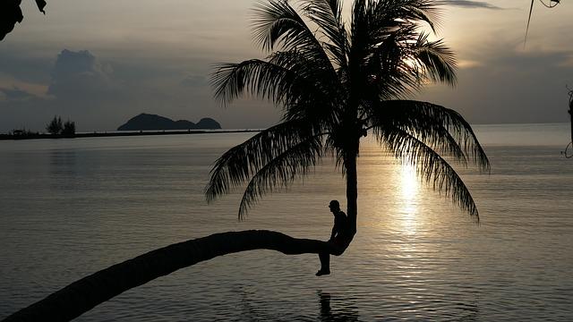 sunset-2371060_640.jpg