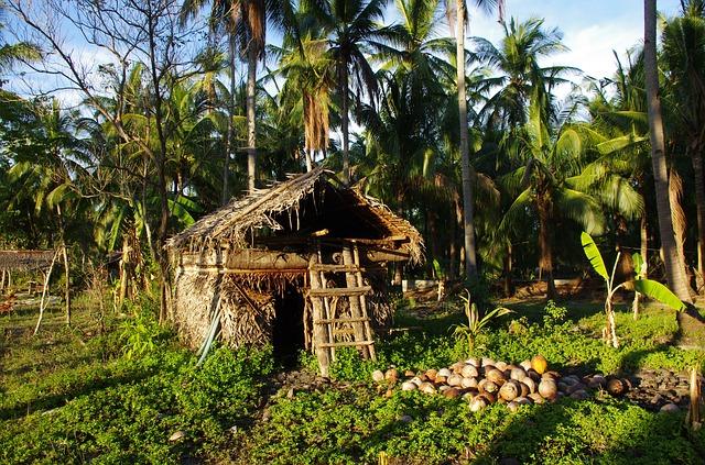 tropics-3617964_640.jpg