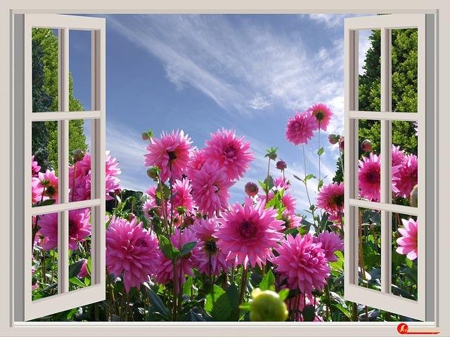 a-beautiful-day-174599_640_1404455204.jpg_640x480