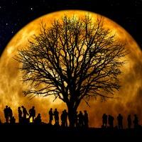 A gyökerektől a rügyekig – összeköttetés a családfában
