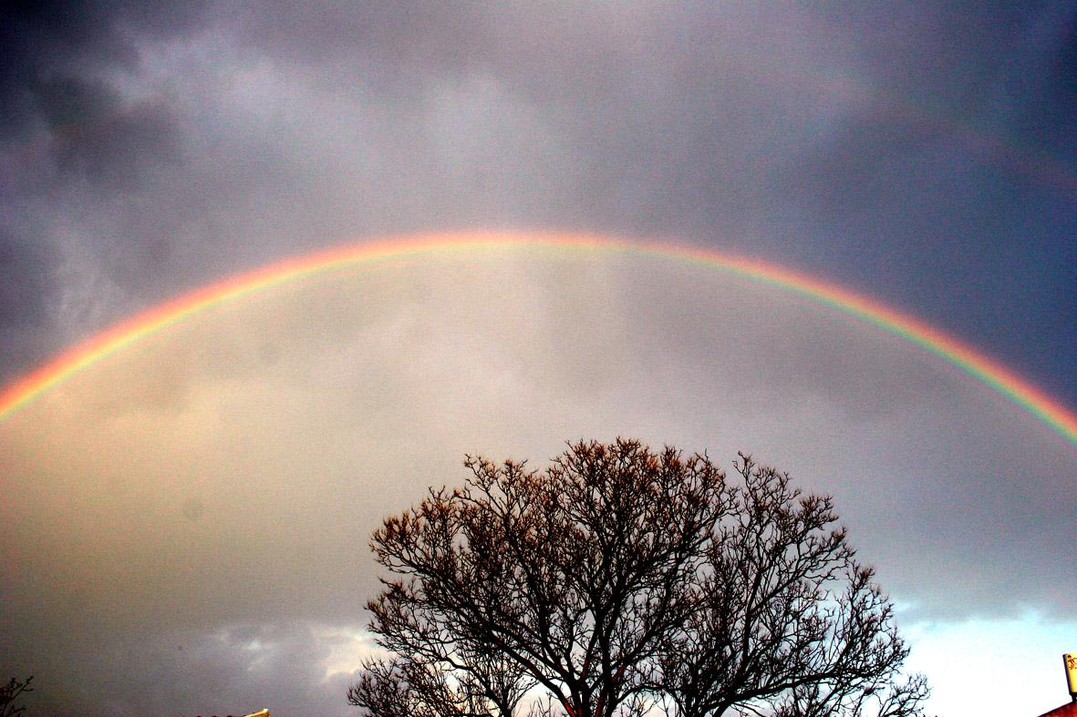 rainbow-3-1531291.jpg