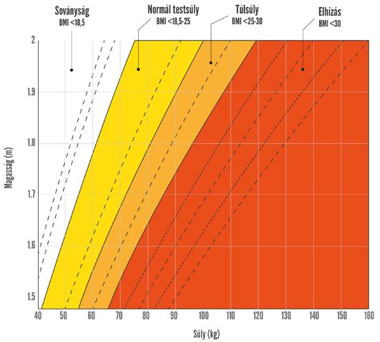 bmi_grafikon550_1.jpg