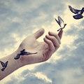 Megbocsátás és elengedés