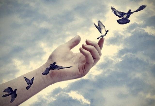 birds-flying.jpg